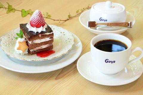 カゴシマプラス ガヤコーヒー