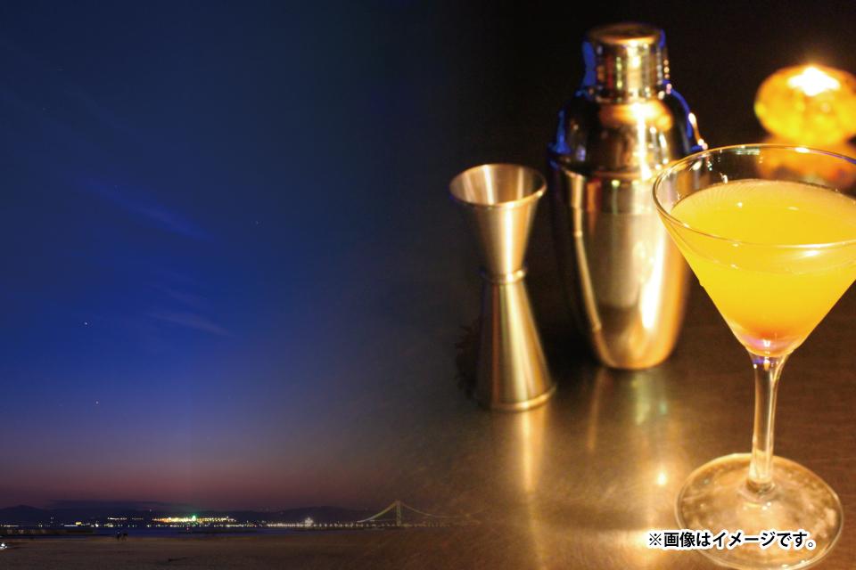 錦江湾の上で美味しいカクテル飲みながらパーティー!