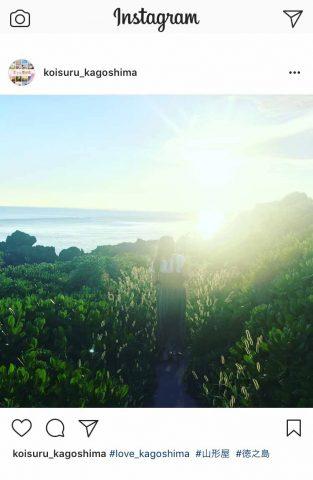 カゴプラ_恋する鹿児島