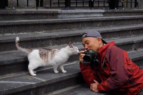 カゴプラ/世界ネコ歩き/岩合さん