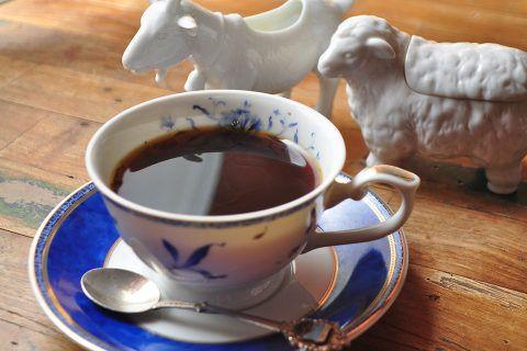 カゴプラ/ハックルベリー/コーヒー