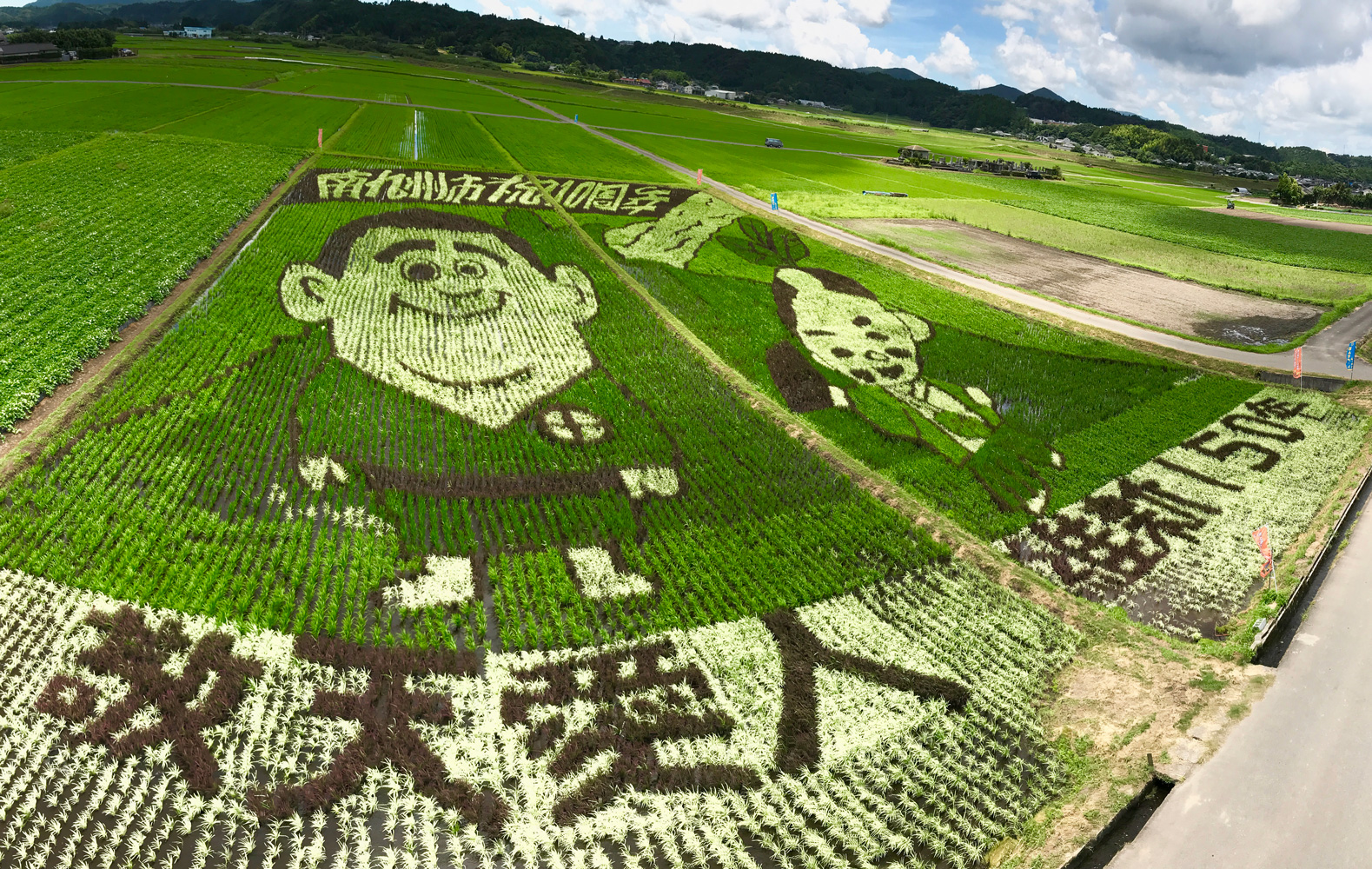 田んぼをキャンバスにしたビッグなアートが登場!