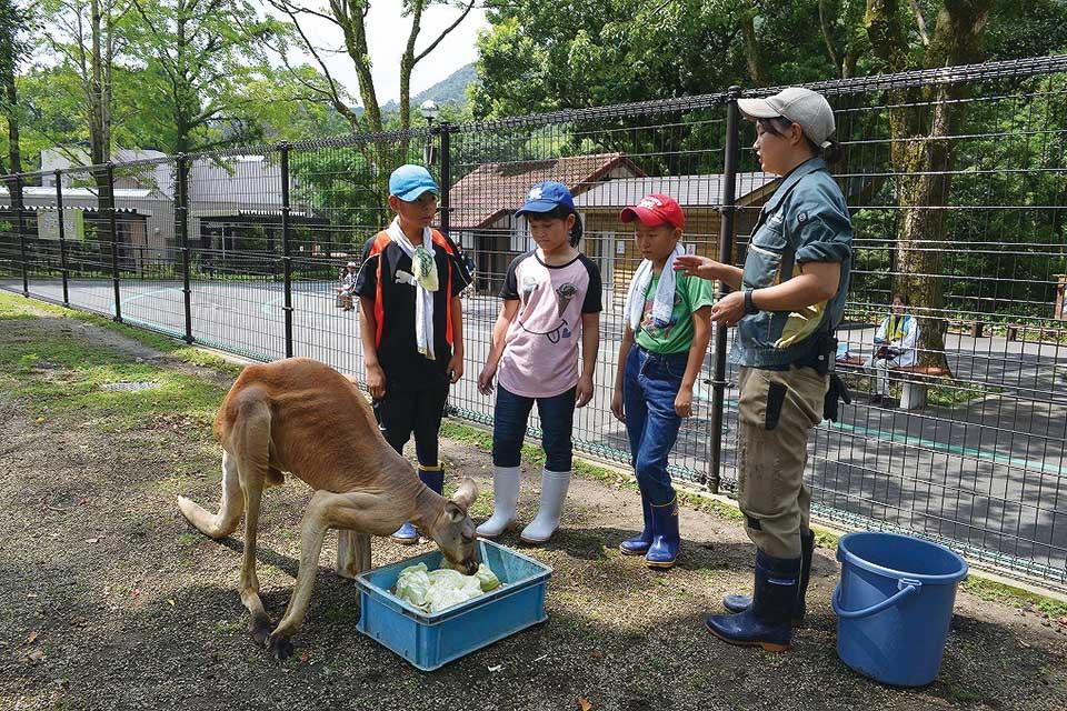 夏の動物公園まつり