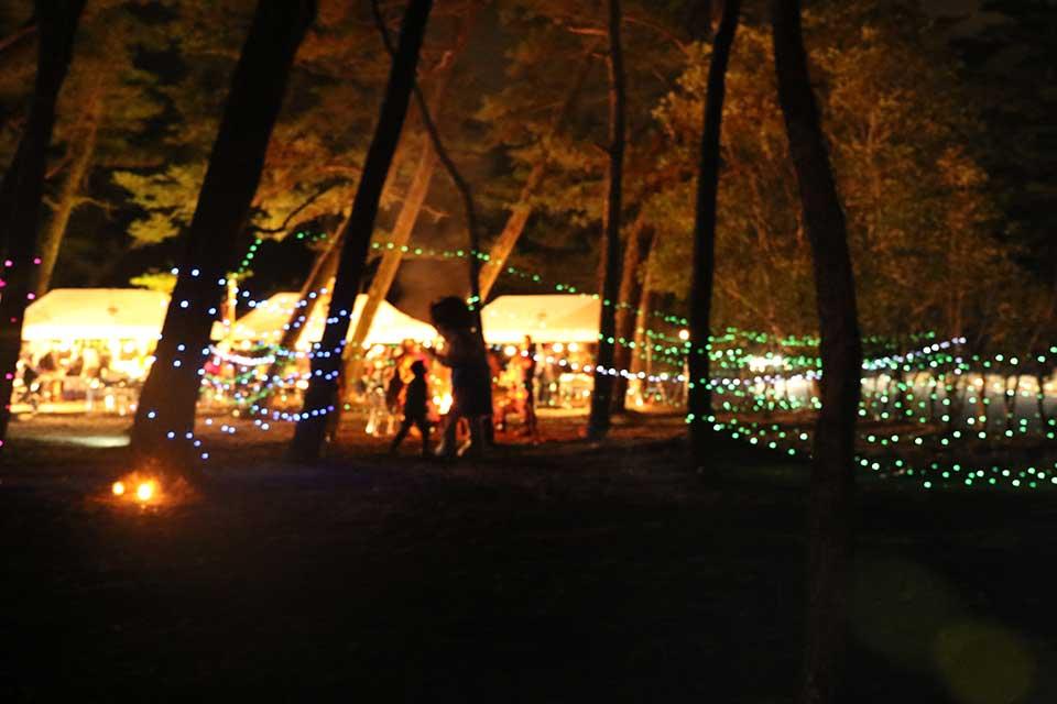 小さな森のクリスマス