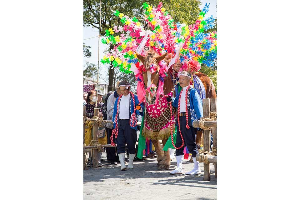 鹿兒島神宮初午祭