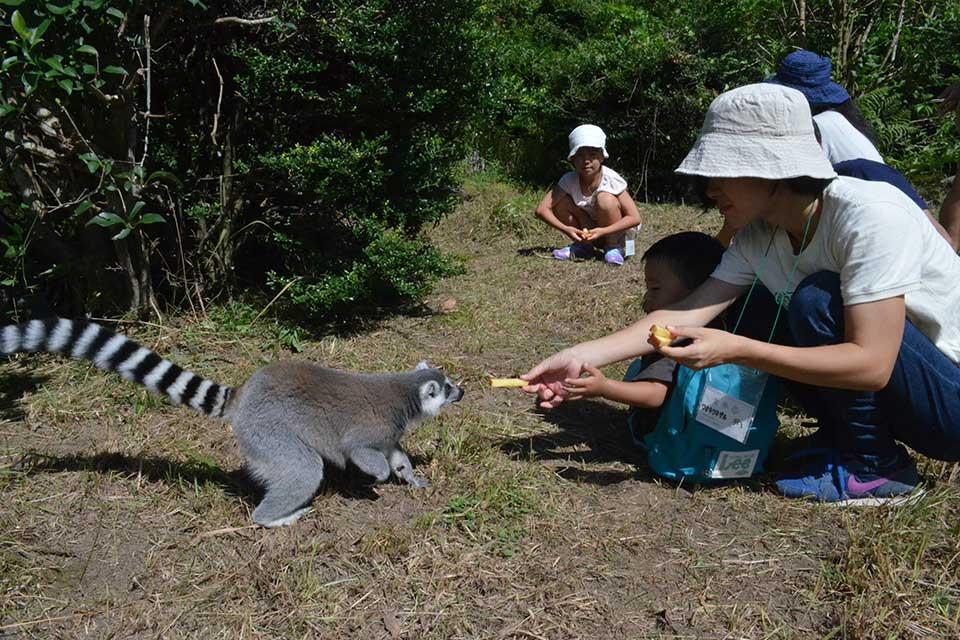 平川動物公園「春の動物公園まつり」