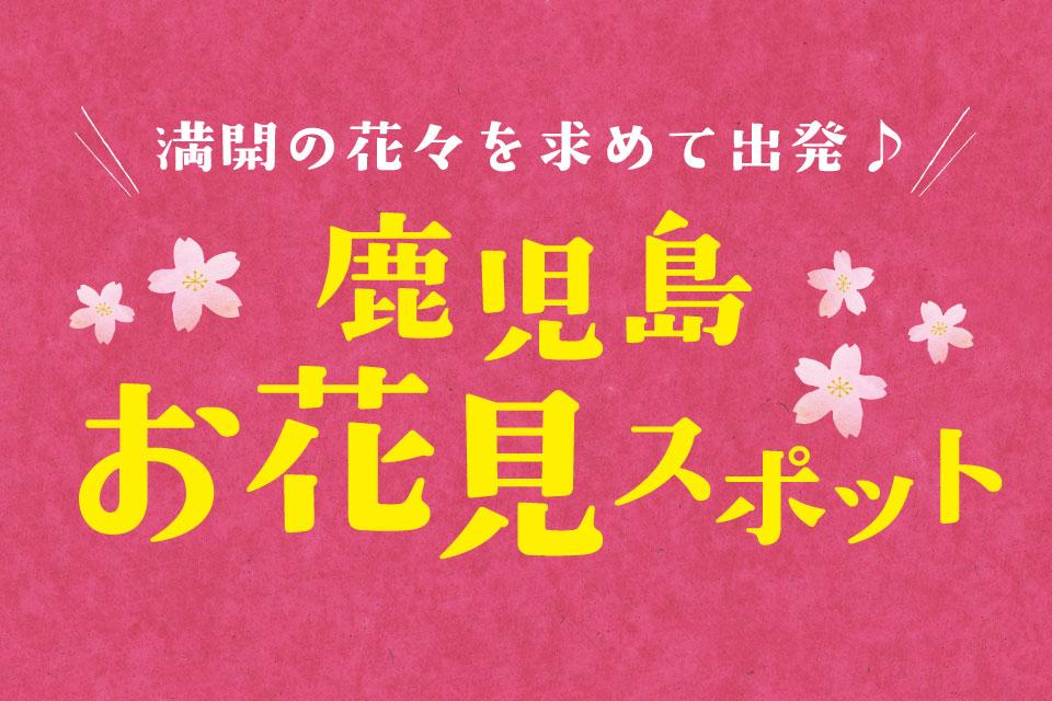 『鹿児島お花見スポット』