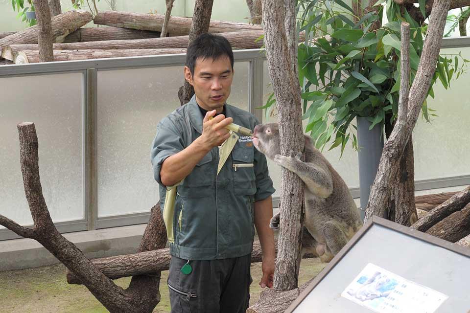 平川動物公園 こどもまつり