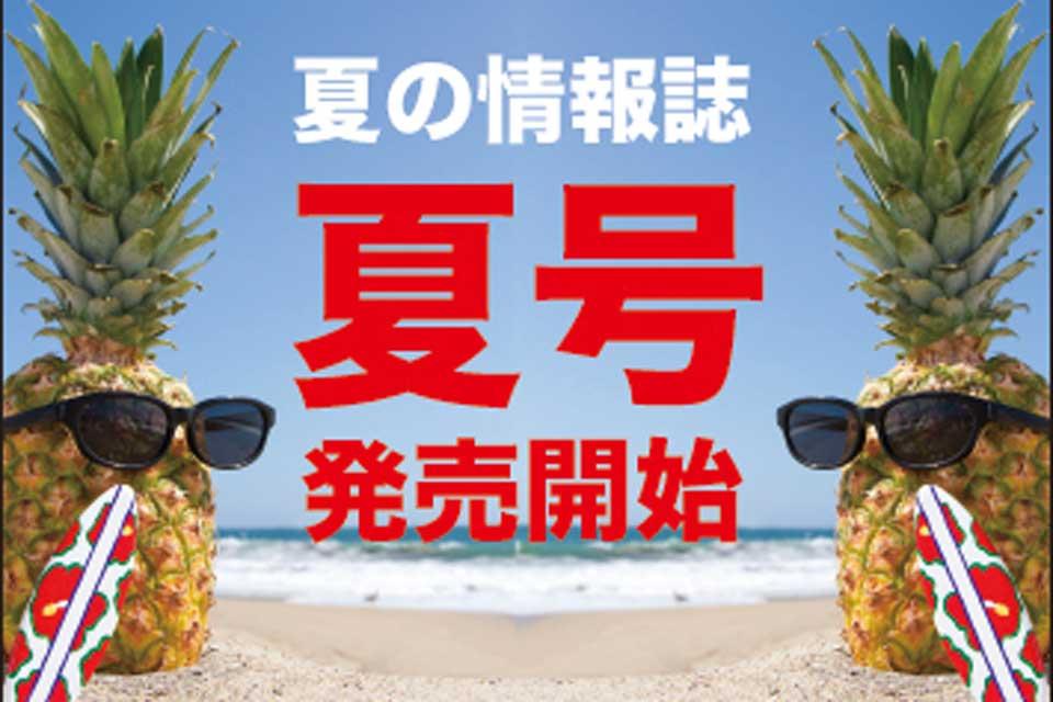 【夏号2019】最高の夏を過ごしたい人、朗報です!究極進化した夏号をゲットすれば、最高の夏、確定!