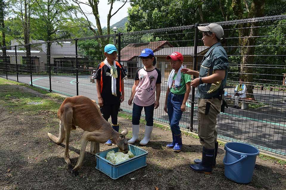 【鹿児島市】平川動物公園 夏の動物公園まつり