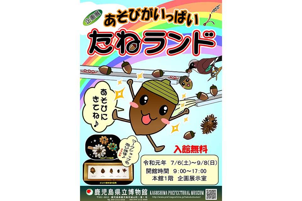 【鹿児島県立博物館】あそびがいっぱい「たねランド」