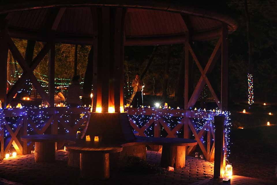 【東串良町】小さな森のクリスマス