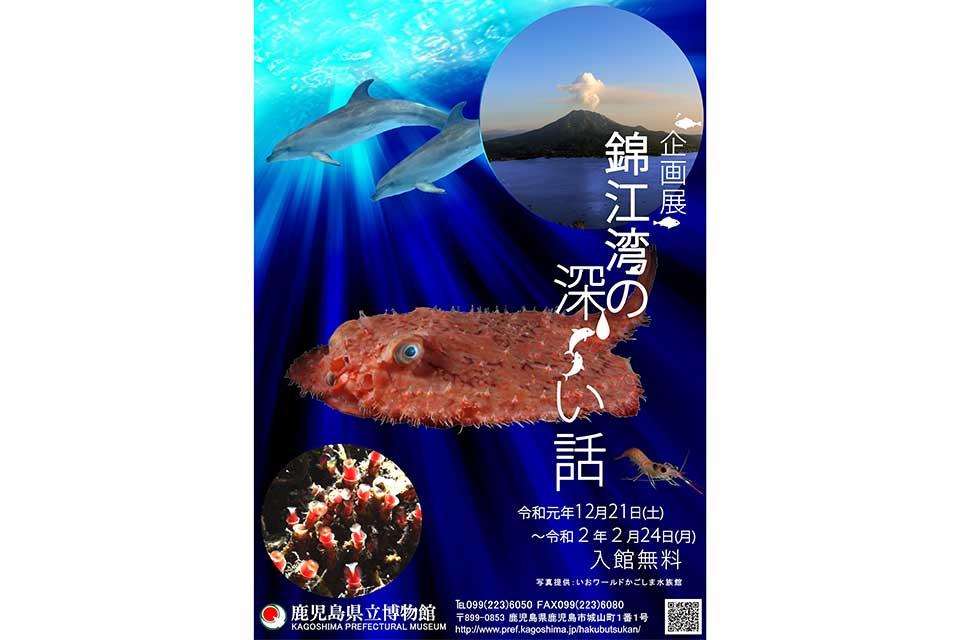 【鹿児島県立博物館】錦江湾の深〜い話