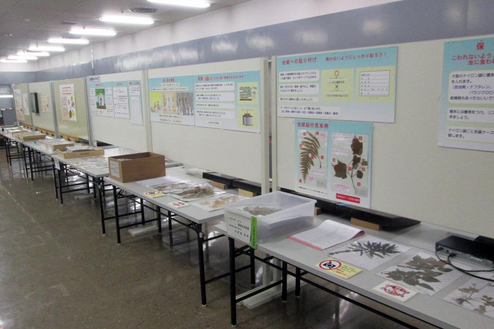 【鹿児島県立博物館 別館】企画展 チャレンジ料理研究