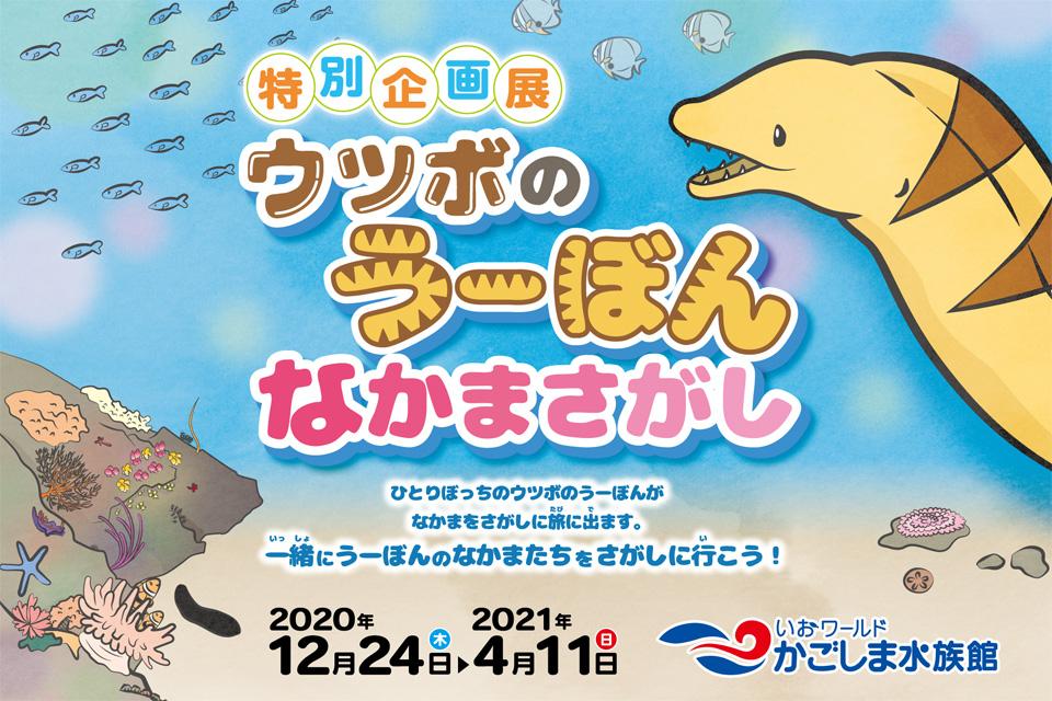 【いおワールドかごしま水族館】特別企画展 ウツボのうーぼんなかまさがし