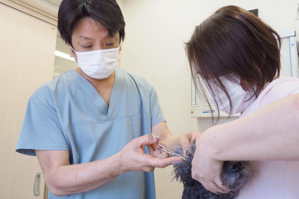 うすき動物病院
