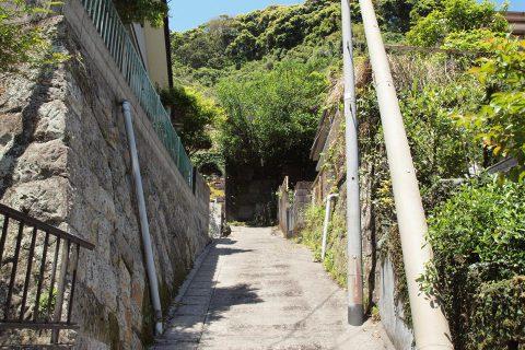 街ネタプラス|鹿児島|グルメ|momoyori